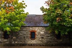 Σπίτι στην Ιρλανδία με το φύλλωμα πτώσης στοκ εικόνες