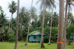 Σπίτι στη ζούγκλα στοκ φωτογραφία