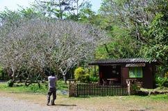Σπίτι στον καταρράκτη WANG Takhrai σε Nakhon Nayok Ταϊλάνδη Στοκ φωτογραφία με δικαίωμα ελεύθερης χρήσης