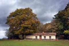Σπίτι στο δάσος φθινοπώρου Στοκ φωτογραφίες με δικαίωμα ελεύθερης χρήσης