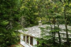 Σπίτι στο δάσος Στοκ εικόνα με δικαίωμα ελεύθερης χρήσης
