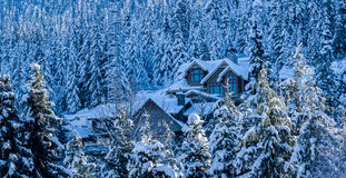 Σπίτι στο παγωμένο δέντρο στοκ εικόνα