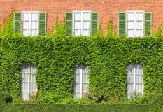 Σπίτι τοίχων στον κισσό Στοκ εικόνα με δικαίωμα ελεύθερης χρήσης