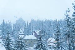 Σπίτι χειμερινού χιονιού θέρετρο Έφαγε στο χιόνι στοκ εικόνες