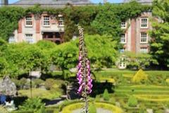 Σπίτι Bantry και κήποι, Bantry, δυτικό Κορκ Ιρλανδία στοκ φωτογραφίες με δικαίωμα ελεύθερης χρήσης
