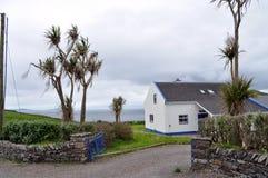 Σπίτι Dingle, ιρλανδική αγελάδα κομητειών, Ιρλανδία Στοκ εικόνα με δικαίωμα ελεύθερης χρήσης