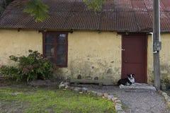 Σπίτι Rurual στην πόλη Conchillas, Ουρουγουάη στοκ φωτογραφία με δικαίωμα ελεύθερης χρήσης