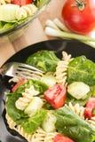 Σπανάκι κήπων και σαλάτα ζυμαρικών rotini Στοκ φωτογραφία με δικαίωμα ελεύθερης χρήσης