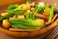 σπανάκι σαλάτας μάγκο καρότων Στοκ Εικόνα