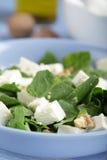 σπανάκι σαλάτας φέτας στοκ εικόνα με δικαίωμα ελεύθερης χρήσης