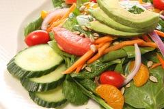 σπανάκι σαλάτας στοκ εικόνα με δικαίωμα ελεύθερης χρήσης