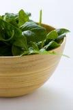 σπανάκι σαλάτας Στοκ Εικόνα
