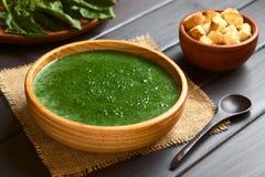 σπανάκι σούπας κρέμας Στοκ Εικόνα