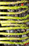 σπαράγγι που ψήνεται στη &sigma στοκ φωτογραφία με δικαίωμα ελεύθερης χρήσης
