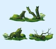 Σπασμένα δέντρα, κολοβώματα διανυσματική απεικόνιση