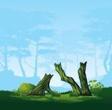 Σπασμένα δέντρα με μια κυρτή κορώνα ελεύθερη απεικόνιση δικαιώματος