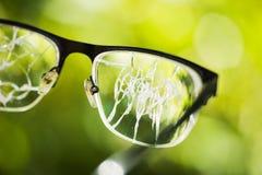σπασμένα γυαλιά στο πράσινο υπόβαθρο Στοκ Εικόνες
