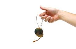 σπασμένα γυαλιά ηλίου Στοκ Εικόνες