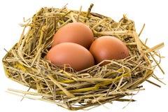 σπασμένα κιβώτιο αυγά αυγών κοτόπουλου μέσα στο λέκιθο στοκ εικόνες με δικαίωμα ελεύθερης χρήσης