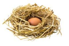 σπασμένα κιβώτιο αυγά αυγών κοτόπουλου μέσα στο λέκιθο στοκ φωτογραφία