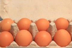 σπασμένα κιβώτιο αυγά αυγών κοτόπουλου μέσα στο λέκιθο Στοκ φωτογραφίες με δικαίωμα ελεύθερης χρήσης