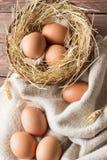 σπασμένα κιβώτιο αυγά αυγών κοτόπουλου μέσα στο λέκιθο Στοκ εικόνα με δικαίωμα ελεύθερης χρήσης