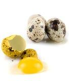 Σπασμένες νησοπέρδικες αυγών Στοκ φωτογραφίες με δικαίωμα ελεύθερης χρήσης