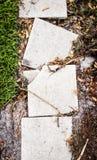 Σπασμένες πλάκες πεζοδρομίων τσιμέντου σε μια πορεία Στοκ Εικόνες