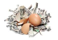 σπασμένες τράπεζα eggshell δολα Στοκ φωτογραφίες με δικαίωμα ελεύθερης χρήσης