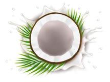 Σπασμένη καρύδα στον παφλασμό γάλακτος διανυσματική απεικόνιση