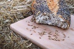 Σπασμένη φραντζόλα του ψωμιού και του σίτου Στοκ φωτογραφίες με δικαίωμα ελεύθερης χρήσης
