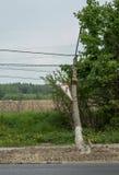 Σπασμένος πόλος στο δρόμο στοκ φωτογραφίες με δικαίωμα ελεύθερης χρήσης