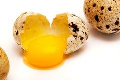 Σπασμένος στο μισό αυγό νησοπέρδικων Στοκ εικόνες με δικαίωμα ελεύθερης χρήσης