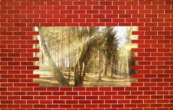 σπασμένος τούβλο τοίχος Στοκ Φωτογραφίες
