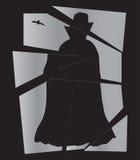 Σπασμένος Dracula καθρέφτης Στοκ Εικόνες