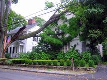 Σπασμένο δέντρο στο σπίτι - ζημία τυφώνα στοκ φωτογραφία