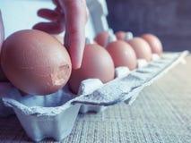 Σπασμένο αυγό στο σύνολο Στοκ Εικόνες