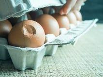 Σπασμένο αυγό στο σύνολο Στοκ Εικόνα