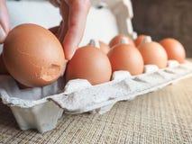 Σπασμένο αυγό στο σύνολο Στοκ φωτογραφίες με δικαίωμα ελεύθερης χρήσης