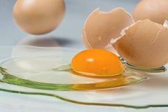 σπασμένο αυγό Στοκ εικόνα με δικαίωμα ελεύθερης χρήσης