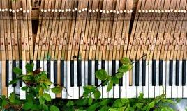 σπασμένο παλαιό πιάνο Στοκ Εικόνες