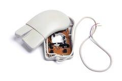 σπασμένο ποντίκι υπολογ&io Στοκ Εικόνα