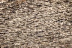 σπασμένο ραγισμένο δάσος δέντρων σύστασης ξύλινο Στοκ Εικόνες