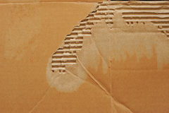 Σπασμένο υπόβαθρο χαρτονιού Στοκ Εικόνα