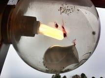 σπασμένο φως βολβών Στοκ φωτογραφία με δικαίωμα ελεύθερης χρήσης