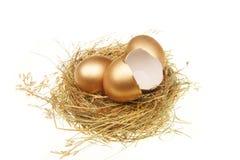 σπασμένο χρυσό σύνολο αυγών Στοκ Εικόνες