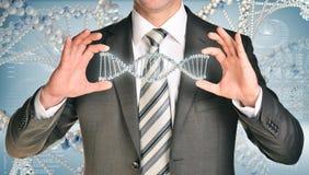 Σπείρα DNA εκμετάλλευσης επιχειρηματιών στα χέρια Στοκ Εικόνες