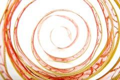 Σπείρες της κορδέλλας στοκ εικόνα με δικαίωμα ελεύθερης χρήσης
