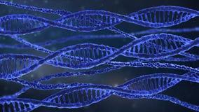 Σπείρες DNA Στοκ εικόνα με δικαίωμα ελεύθερης χρήσης