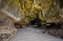 Σπηλιά μολβών του Yong Στοκ Φωτογραφίες